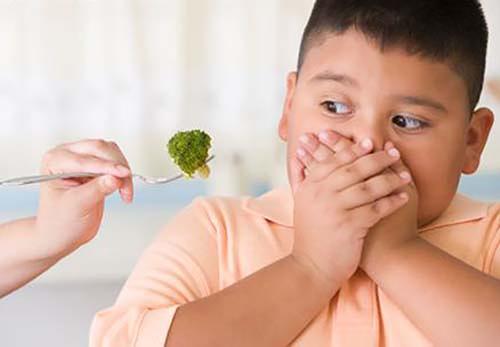 menghadapi anak yang susah makan